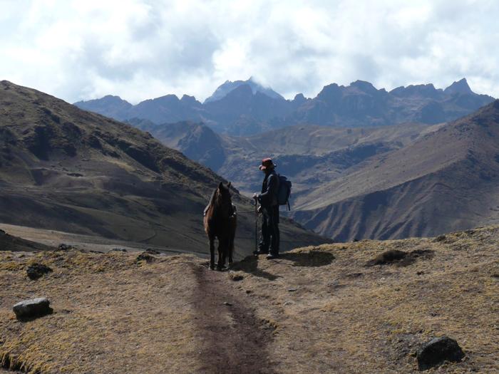 03-Peru_ReisehighlightsIII_Bravebird