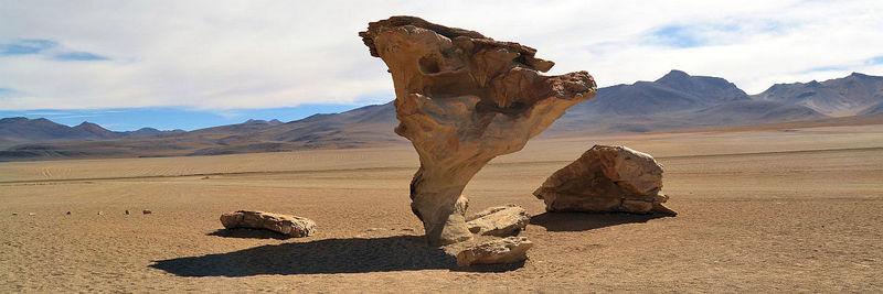 Bolivien_arboldepiedra_Reisehighlight