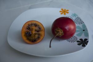 Tomate de Arbol Karibikküste Kolumbien