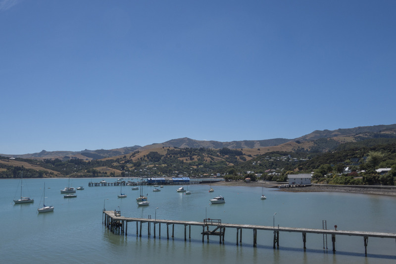 Akaroa Banks Peninsula Neuseeland Südinsel Highlight