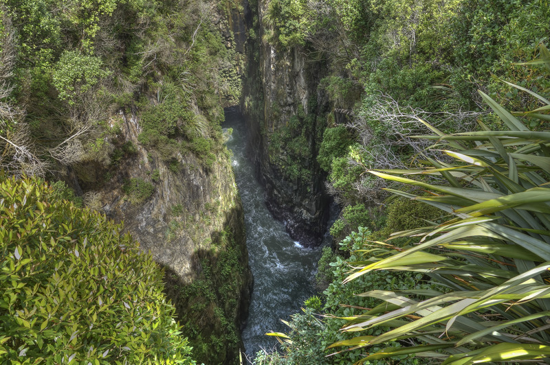 Jacks Blowhole Neuseeland Südinsel Highlight