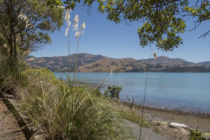 Südinsel Neuseeland Highlight Banks Peninsula