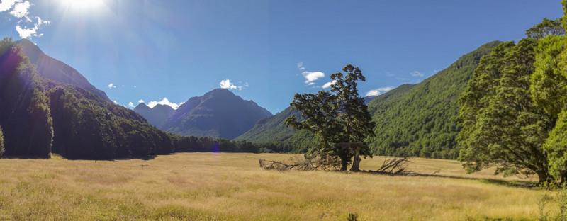 Wandern in Neuseeland: Kostenlos und wunderschön!