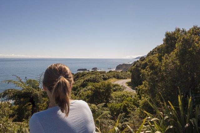 Neuseeland Reise Campervan West Coast