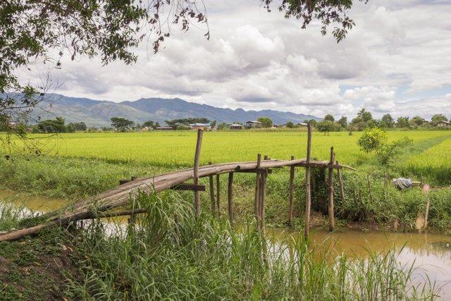 Myanmar Inle See Fahrradtour