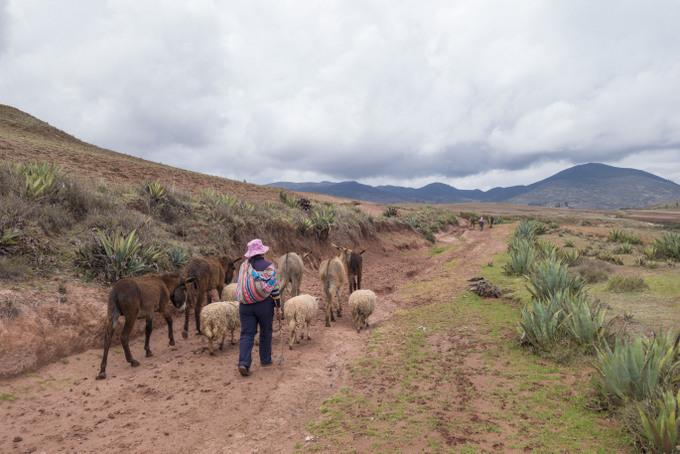 Trekking von Maras nach Moray