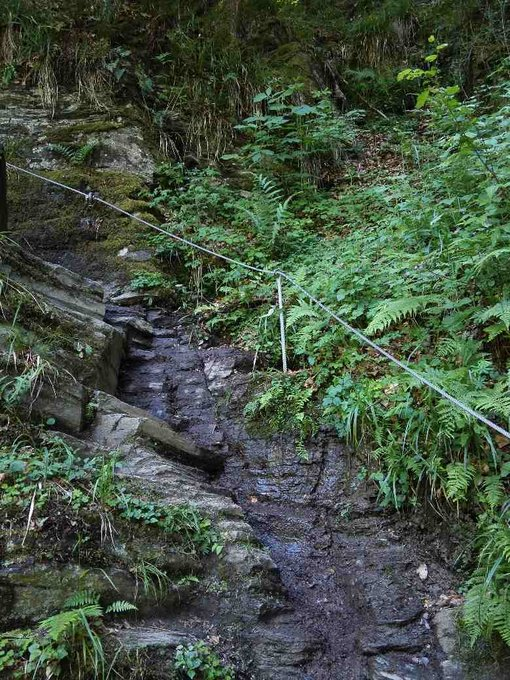 Outdoor Europa Saar-Hunsrueck-Steig-Etappe_21-Hubert Travellerblog