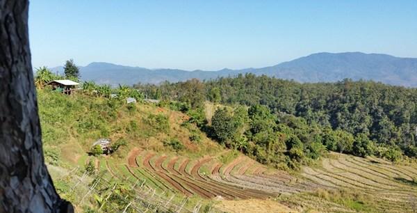 Aktivurlaub Thailand Wandern Reisterrassen