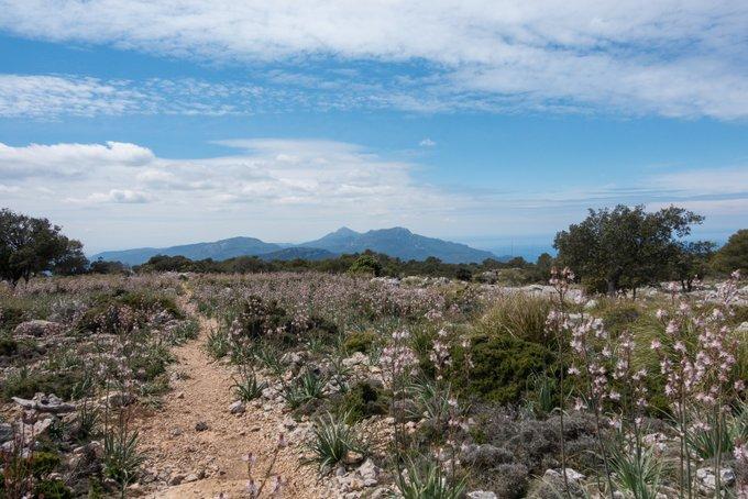 Wandern auf Mallorca Kleine Runde um Valdemossa