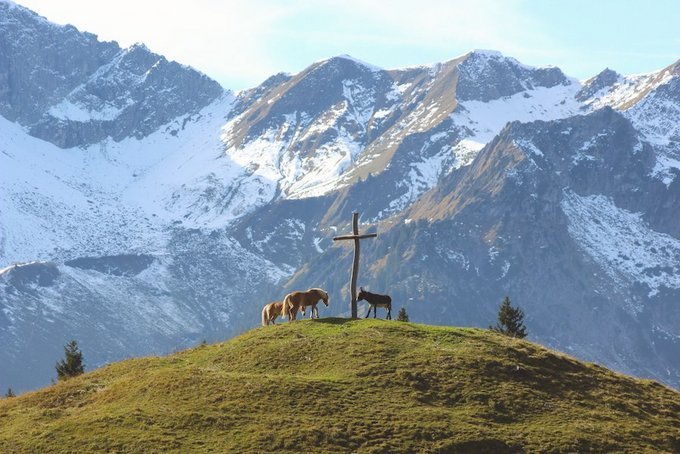 Wandern im Allgäu Willers Alpe2