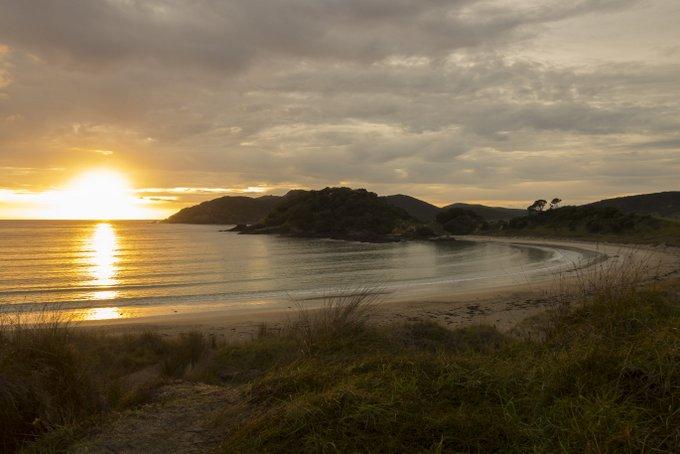 Neuseeland Strand in Northland
