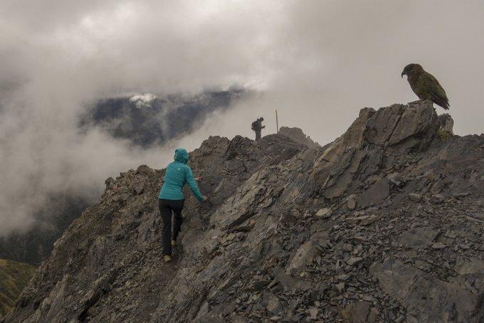 Schlechtes Wetter bei der Wanderung auf den Avalanche Peak