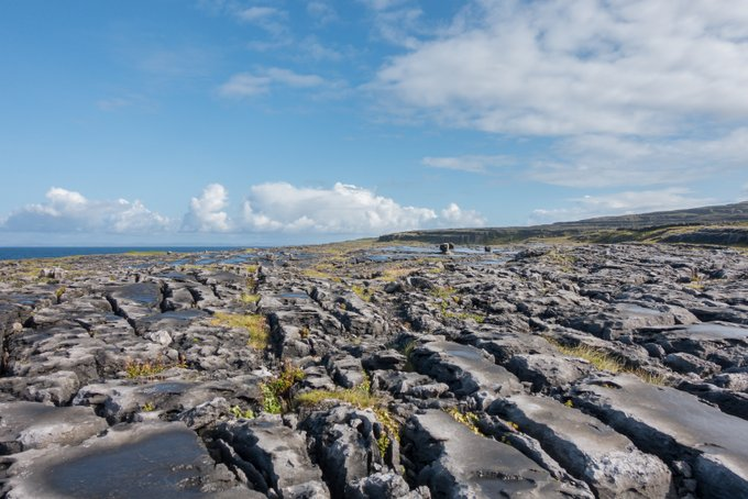 Roadtrip Irland The Burren