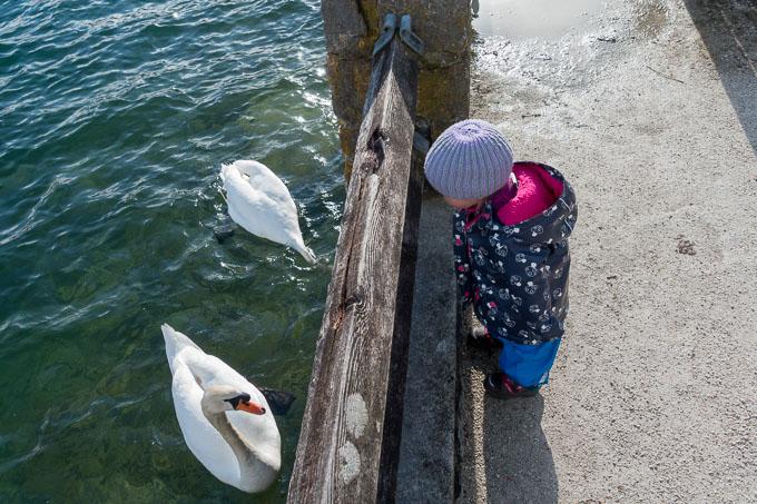 Am Wolfgangsee mit Kleinkind