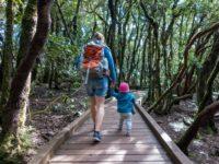 So ist das Wandern mit Kleinkind wirklich!