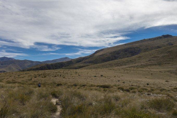 Neuseeland Reiseplanung Blogs lesen