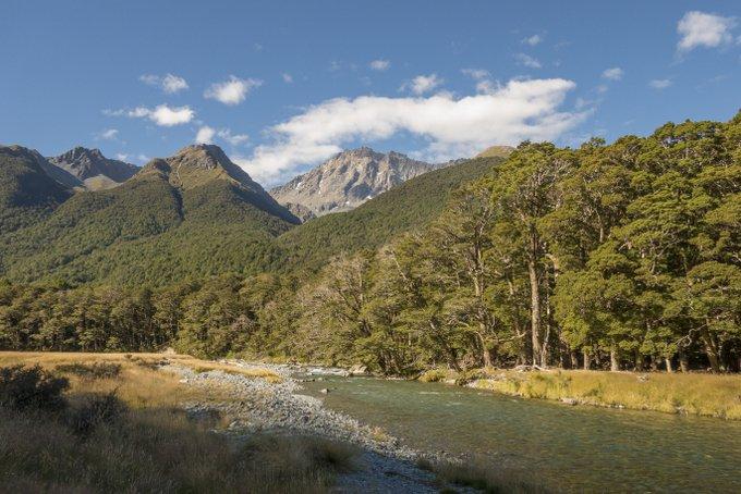 Wandern in Neuseeland Caples & Greenstone Track (3)