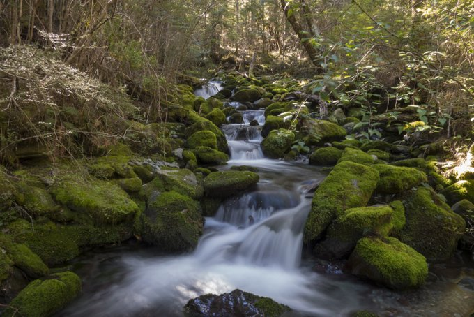 Wandern in Neuseeland Caples & Greenstone Track (4)