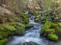 So fotografierst Du einen Wasserfall mit Schleier Effekt ohne Graufilter