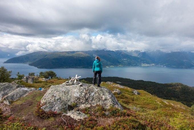 Blick auf den Sognefjord Norwegen