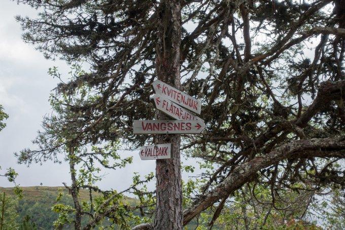Wandern Norwegen Wegweiser Kvitenjuk
