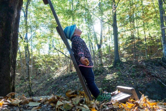 Wandern Bad Kohlgrub mit Kleinkind