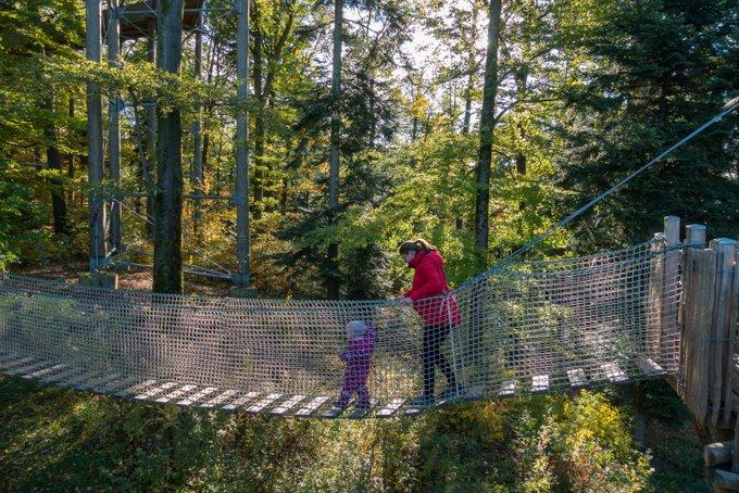 Abenteuerpfad Baumkronenweg Waldkirch