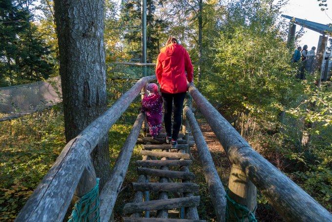Baumkronenweg mit Kindern Waldkirch