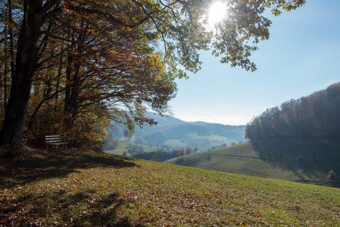 Wandern im Herbst Schwarzwald
