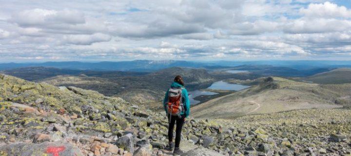 Gefahren beim Wandern weltweit und wie Du Deine Familie im Ernstfall absicherst