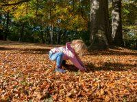 Wandern im Herbst mit Kindern – Meine Tipps und 3 Tourenvorschläge