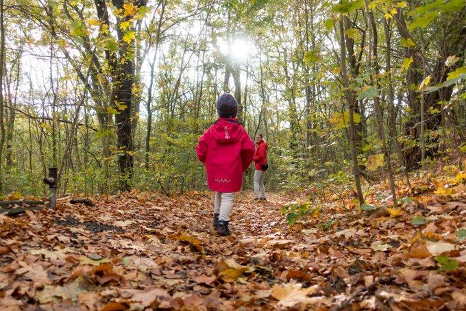 Wandern mit Kindern Herbstluft schnuppern