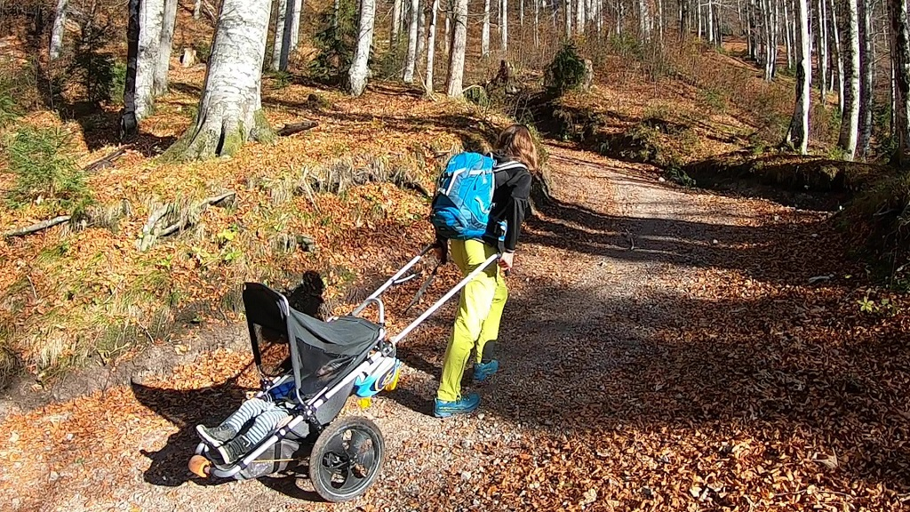 Offroad_Kinderwage_Hike_Kid_Steinbock_am_Berg