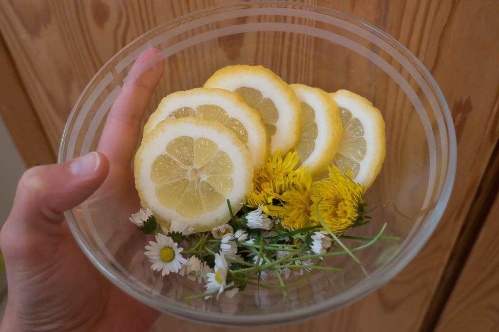Gänseblümchen Sirup selbst machen Rezept