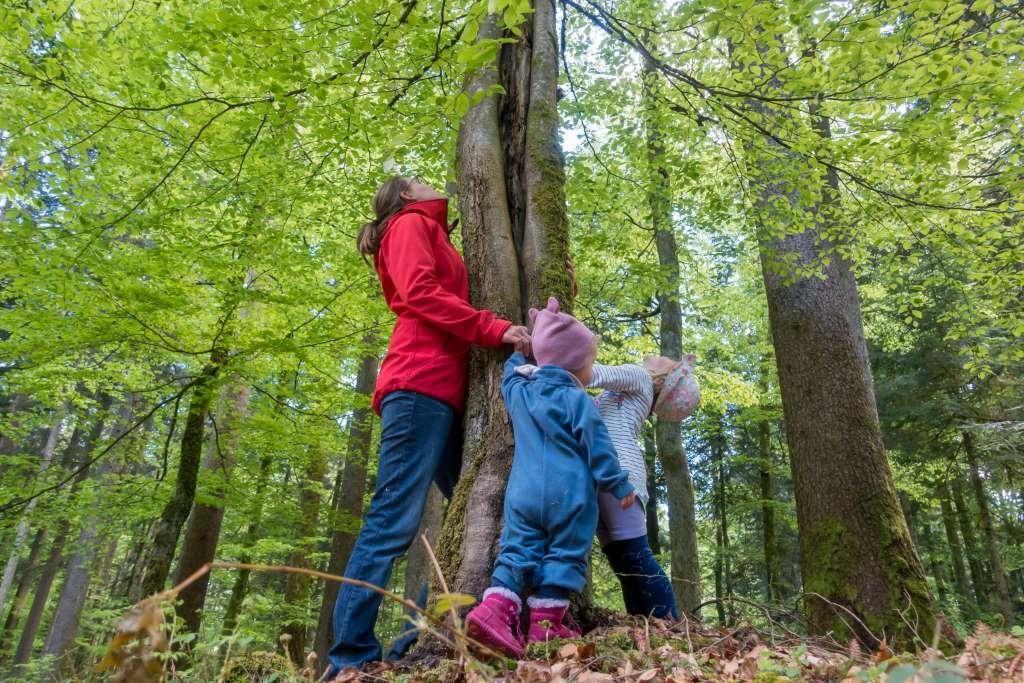 Waldbaden mit Kindern