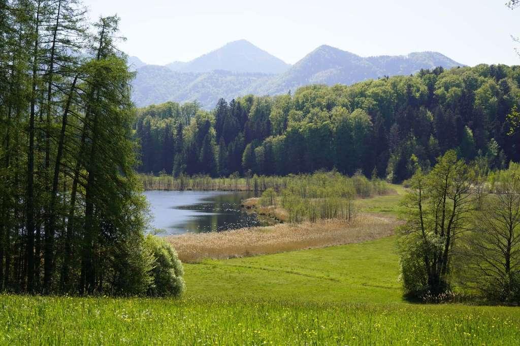 Wandern Kinder Chiemgau Bärnsee