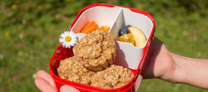 Wandersnacks für Babys und Kinder – 5 einfache und gesunde Rezepte