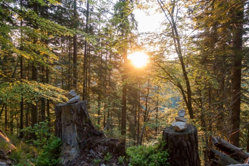 Urlaub zu Hause Waldbaden bei Sonnenuntergang