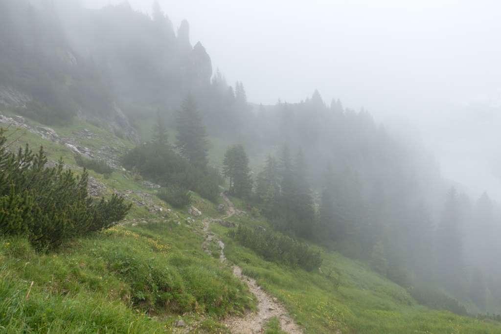 Wanderung Steig Latschenkopf