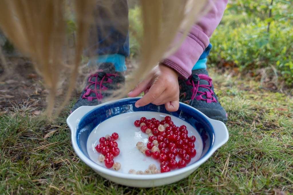 Beeren pflücken Wandern mit Kindern Tipps