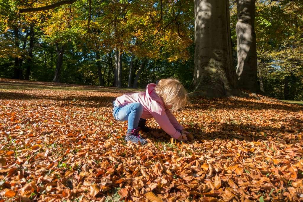Wandern mit Herbst mit Kindern