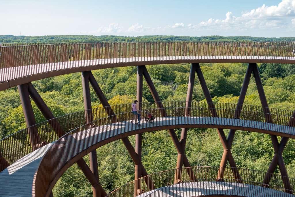 Aussicht Forest Tower Camp Adventure