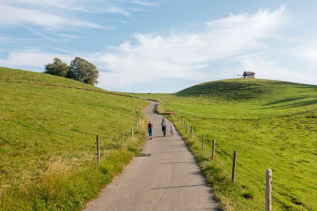 Sanfte Hügel im Allgäu Scheidegg