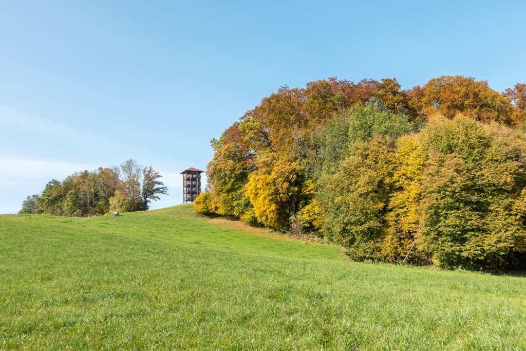 Aussichtsturm Ratzinger Höhe Herbst