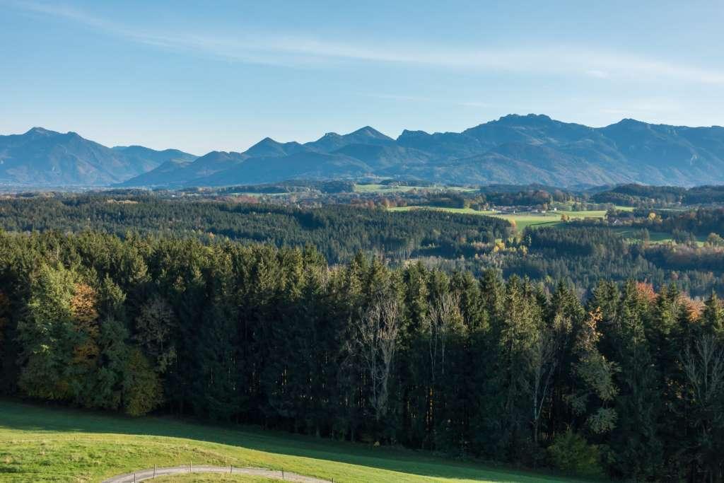 Blick Chiemgauer Alpen