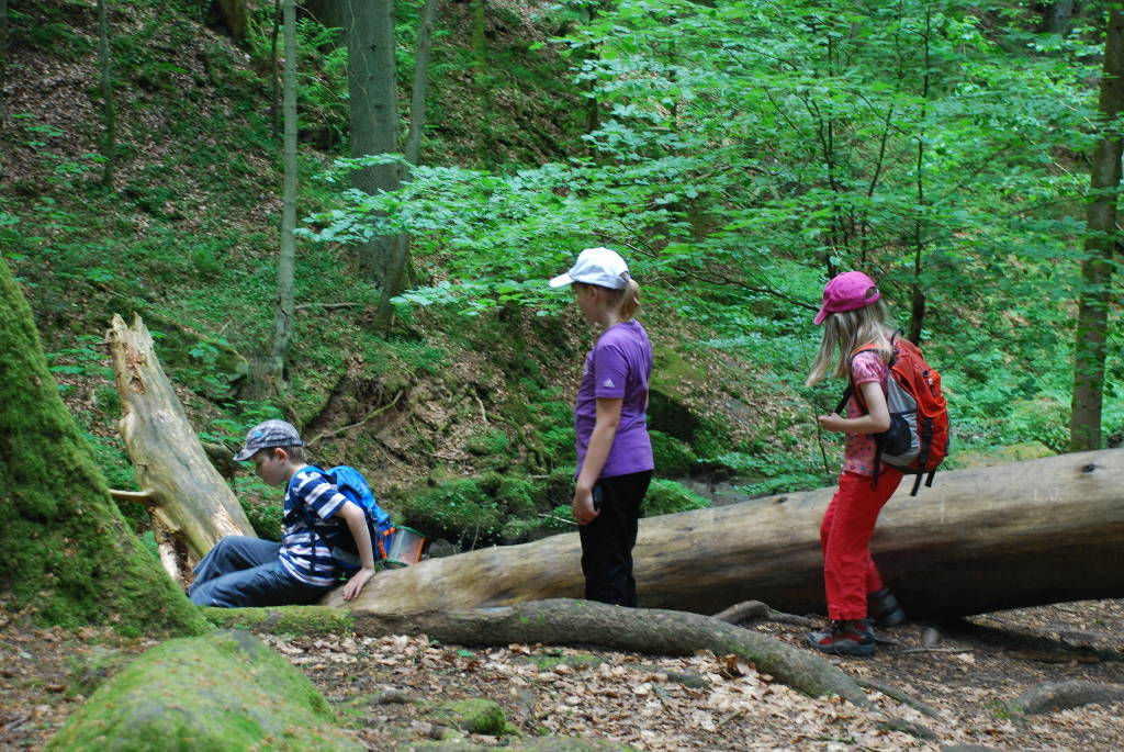 Monbachtal Wandern mit Kindern