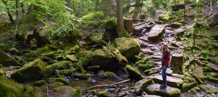 Nordschwarzwald Wandern: 4 abenteuerliche Wandertouren mit Kindern