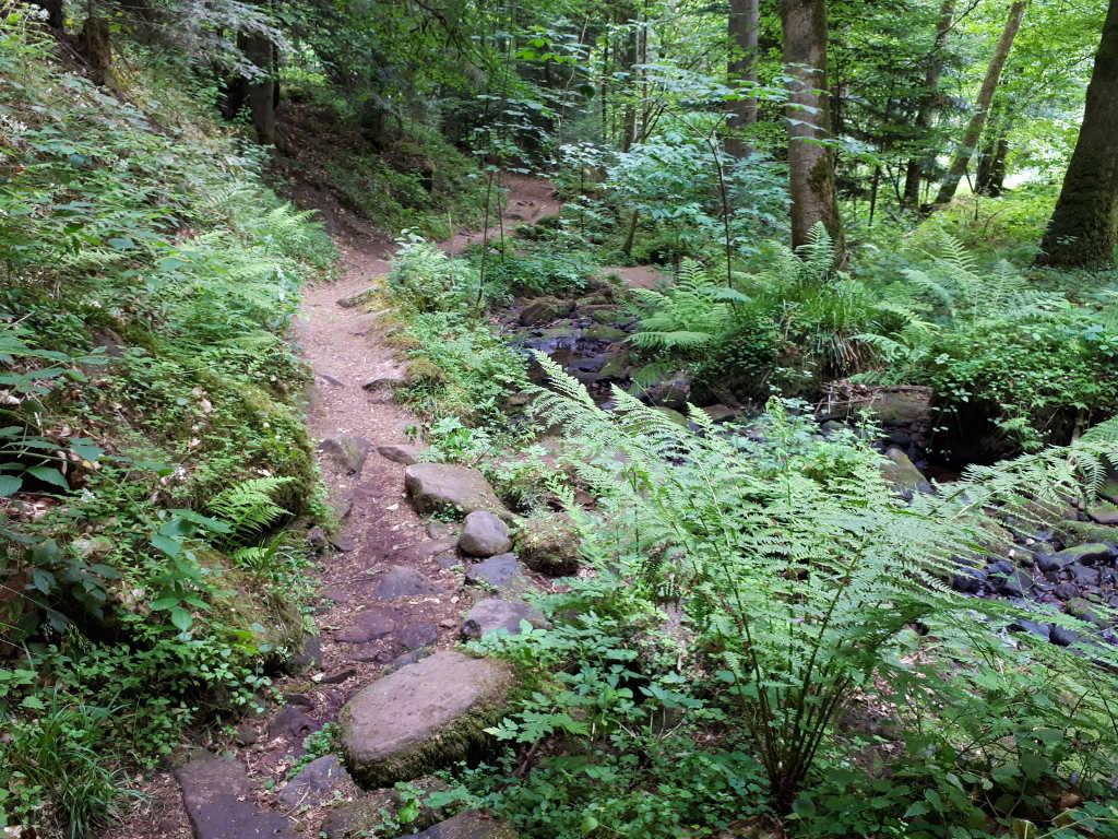 Wandern Schweinbachtal