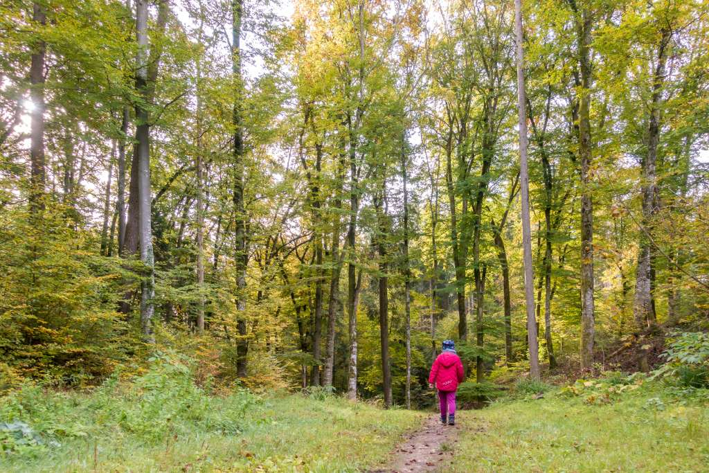 Wandern mit Kindern im Herbst