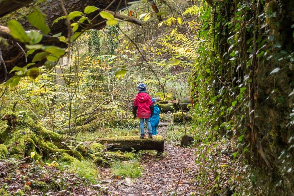 Nachhaltig Wandern mit Kindern